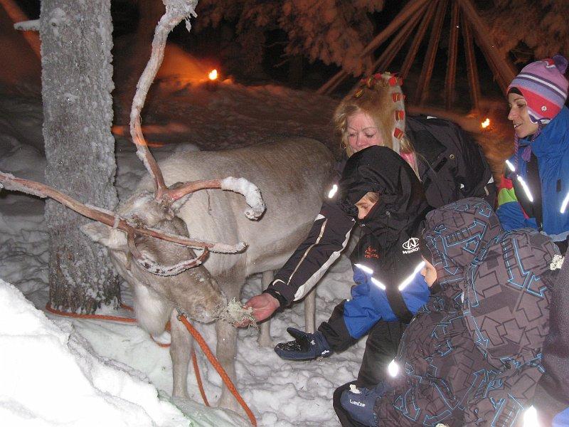 Dove Si Trova Ora Babbo Natale.Dove Si Trova Adesso Babbo Natale Boston Terrier