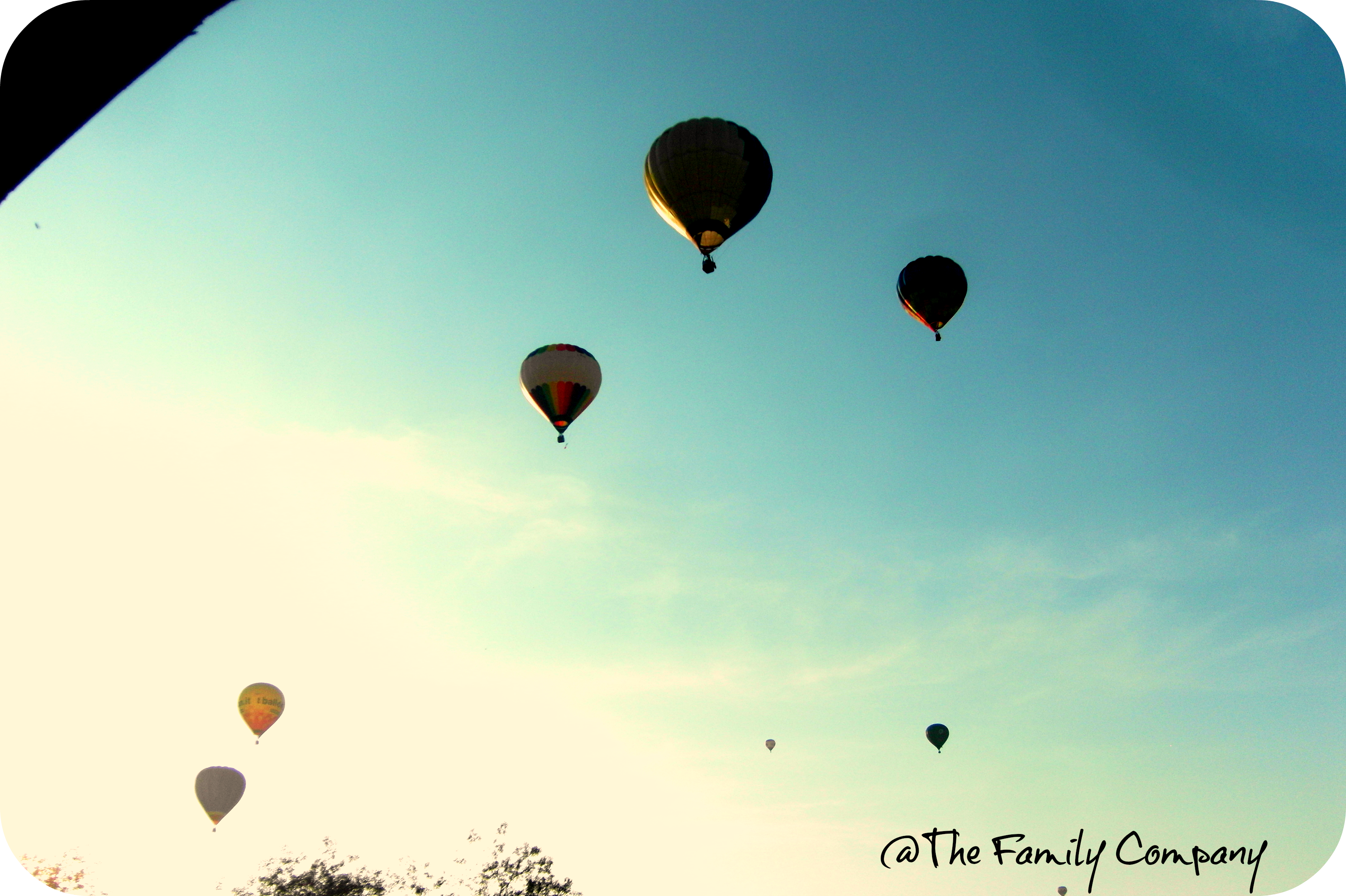 Ferrara Balloons Festival 2