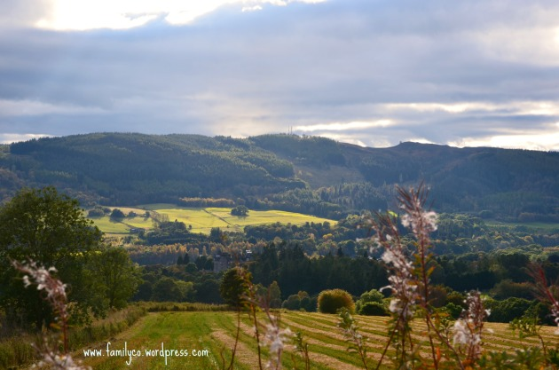 Fields Pertshire Scozia 2